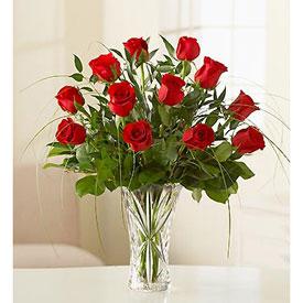 Amazing Roses - Flores en  Natal